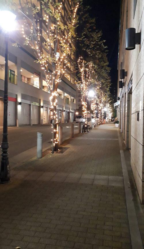 img_promenade2020_03